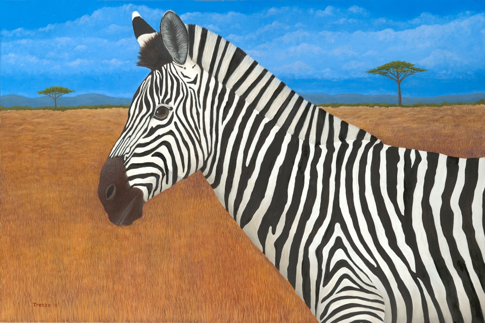 Z is for Zebra Oil on Canvas 24 x 36