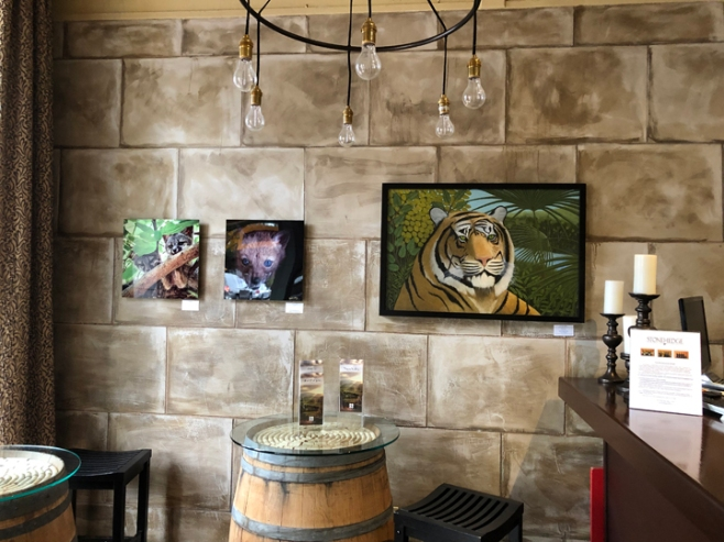 Paintings of Frank Trozzo, Photos by John Comisky at Stonehedge Winery February to March 15th, 2019